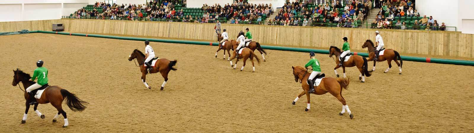 Horseball match takes place at Bishop Burton Equine Arena