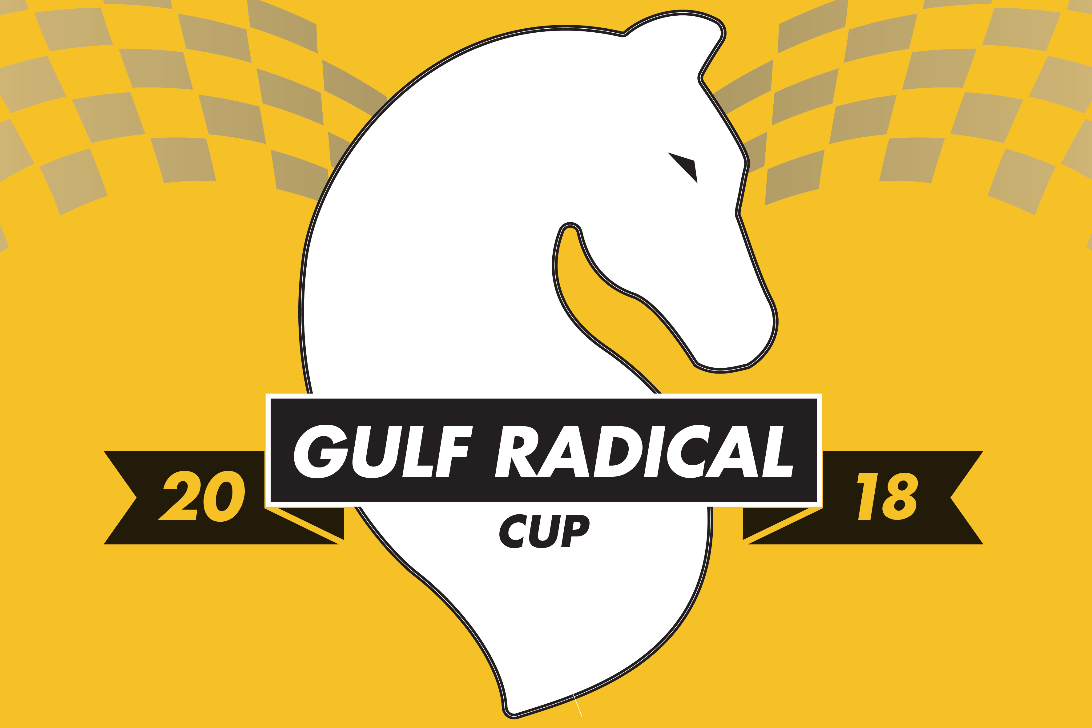 Gulf Radical Cup Returns To The United Arab Emirates